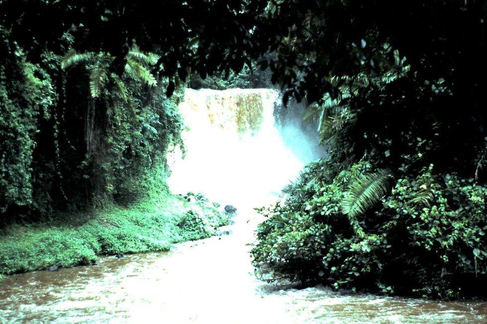 RUTSHURU - CONGO